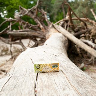 We thank Mother Earth for her gifts and we are happy that thanks to our usage of FSC certified paper we can also give gifts in return.  🍃💚  #greengo #stoner #stoned #420 #weed #rollingpaper #instaweed #nature #stonergear #ecofriendly #FSC #pothead #cannabiscommunity #marijuana #thc #highlife #maryjane #stoned #cannabisculture #kush